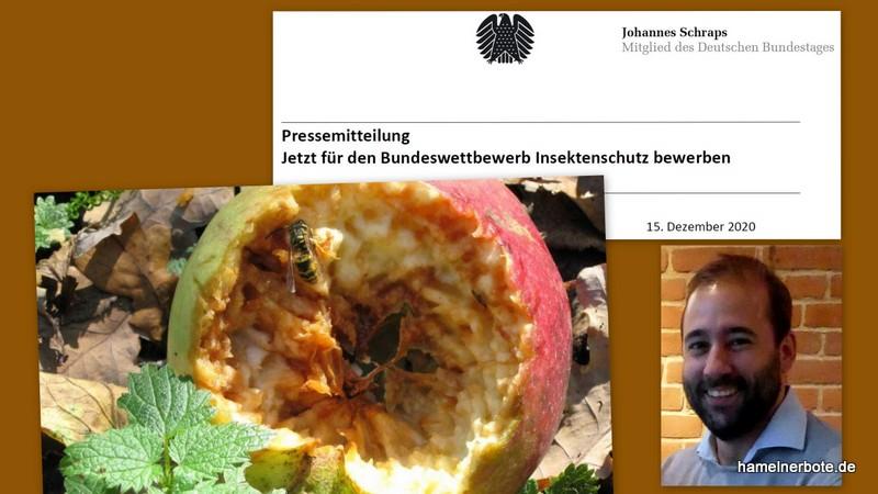 Pressemitteilung: Jetzt für den Bundeswettbewerb Insektenschutz bewerben