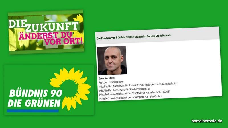Grüne im Rat der Stadt Hameln: Klare Haltung zur Weidelandschaft Weserbogen