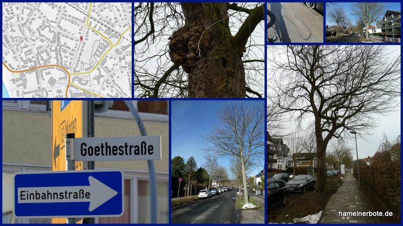 Straßensanierung Goethestraße Hameln. Kahlschlag als Option!