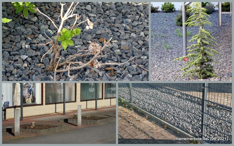 Visitenkarte Vorgarten: Beispiele aus Hameln.