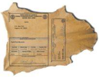 Deer Skin License