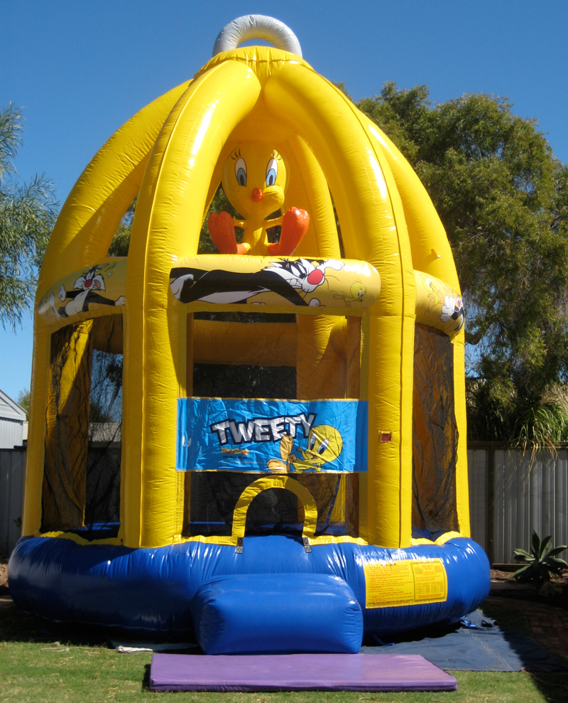 Hamilton Amusements | Fun, safe and exciting carnival rides, show rides and sideshow amusements for hire in Adelaide, South Australia. We offer thrill rides, bouncy castles and Australia's largest inflatable slide for school fairs, fetes, Christmas party hire, family days, social clubs and sporting clubs events.