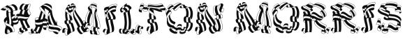 Hamilton Morris logo