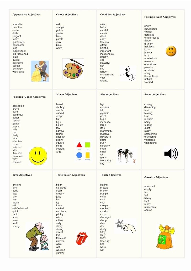 30 Adjectives for Letter Of Recommendation