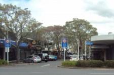 commerce St Mid Trees