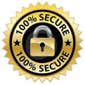 100-secure-website-seal-thumb18731629