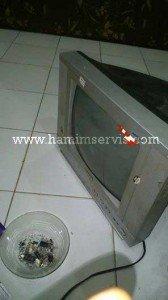 Cara Membuka Tv Yg Terkunci : membuka, terkunci, Servis, Elektronik, Hamimservis.Com