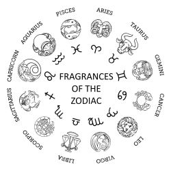 Candles - The Zodiac