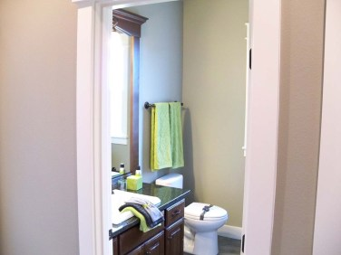 Plum Guest Bathroom