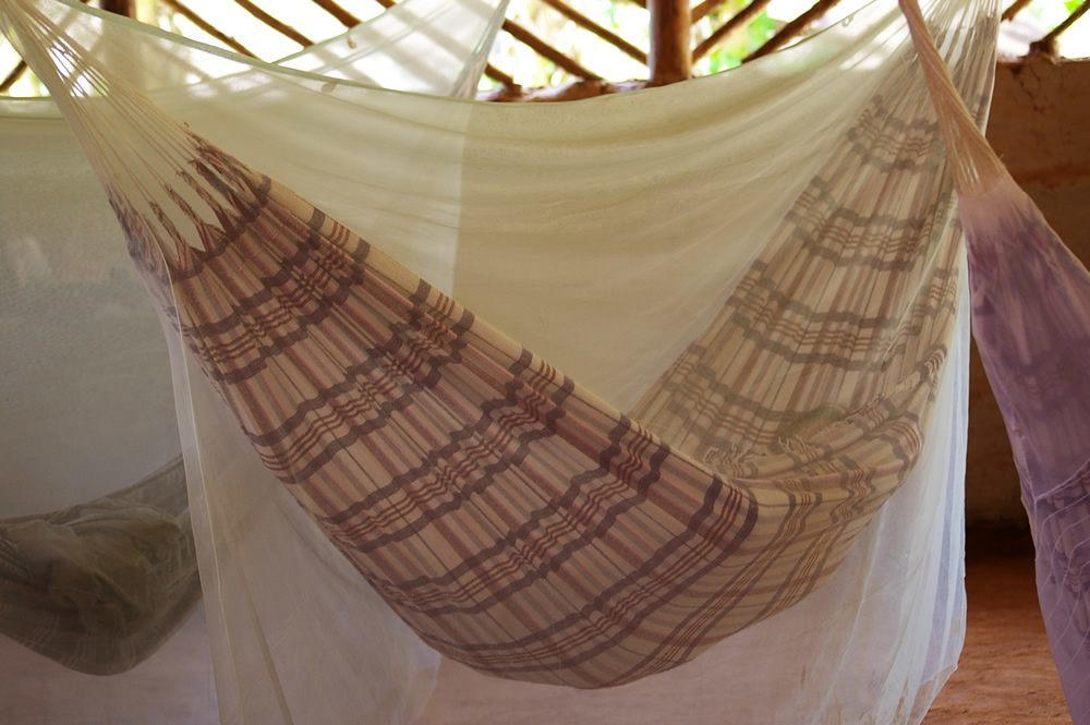 Best Hammock with Mosquito Nets best for your safety