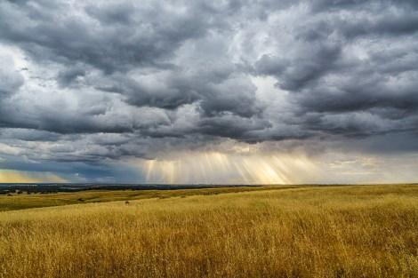 God Rays by Greg Mitchell.