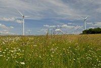 Cartographie de l'éolien en Wallonie – Avis de la locale Ecolo de Hamois