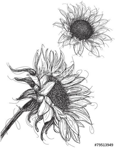 92 Sketsa Bunga Tiga Dimensi