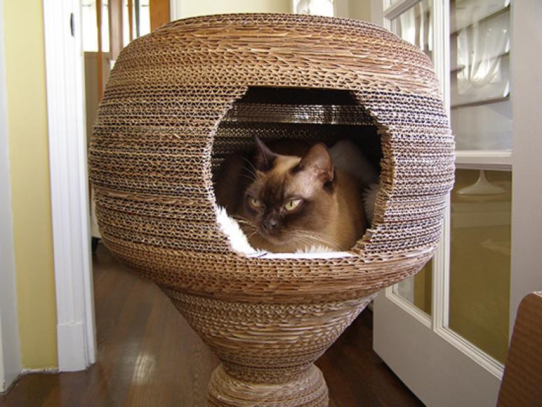 cara membuat rumah kucing dari kardus yang mudah