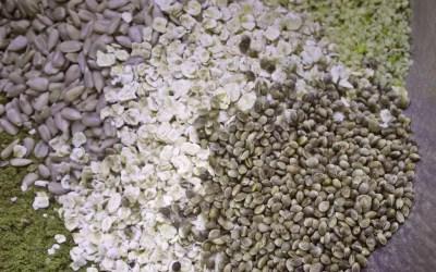Siemennäkkileipä hampusta
