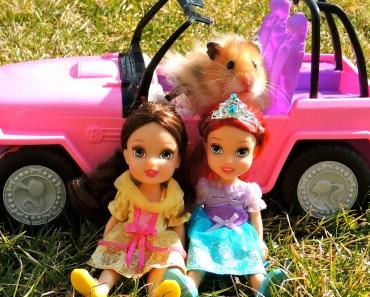 DISNEY PRINCESS DOllS- Pet HAMSTER (PART 1-)cute-funny- playing outside -BARBIE Car - disney princess dolls pet hamster part 1 cute funny playing outside barbie car