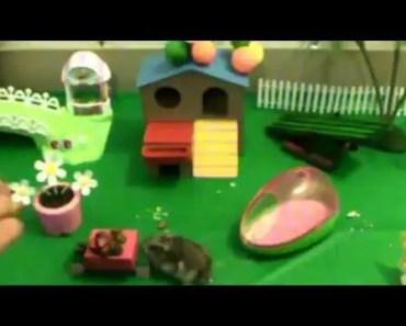 Funny hamsters video Happy Birthday Mr. Skittles Birthday party for hamster - funny hamsters video happy birthday mr skittles birthday party for hamster