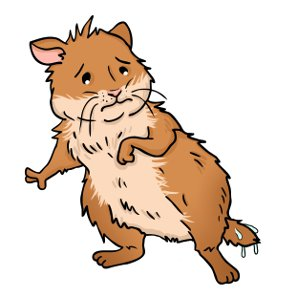 Hamster wet tail