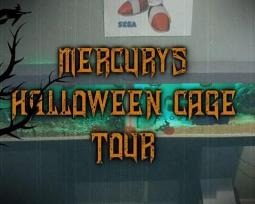 HALLOWEEN THEME Hamster Cage Tour - halloween theme hamster cage tour