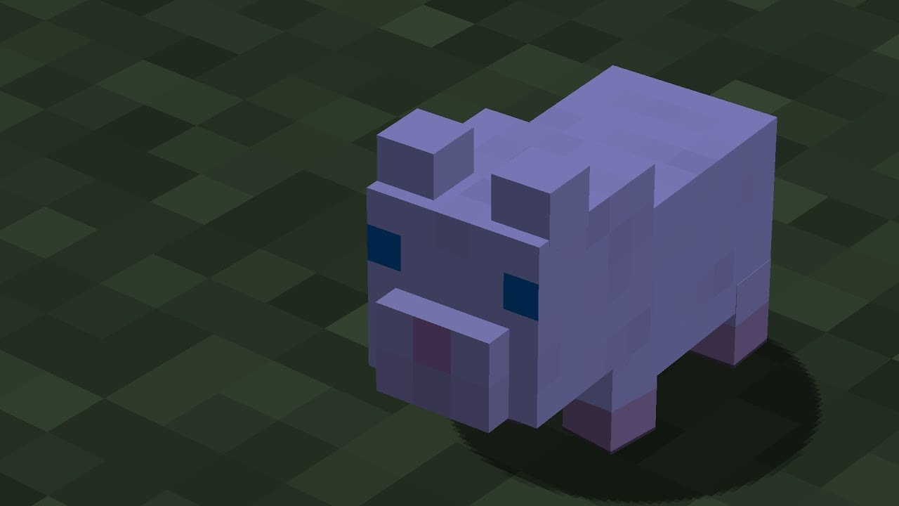 minecraft modat ce hamster draguuuut hamster care sheet