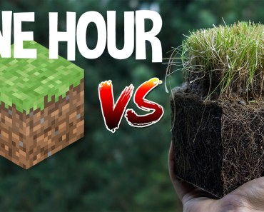 ONE HOUR OF Minecraft vs Real Life - one hour of minecraft vs real life