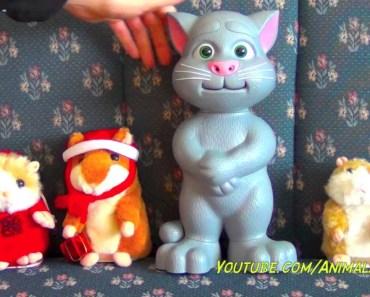 Talking Cat Tom Toy & DJ Hamster Rapper, 2 Mimicry Talking Hamsters - talking cat tom toy dj hamster rapper 2 mimicry talking hamsters