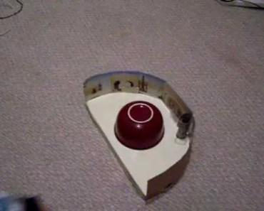 funny hamster - 1510091053 funny hamster