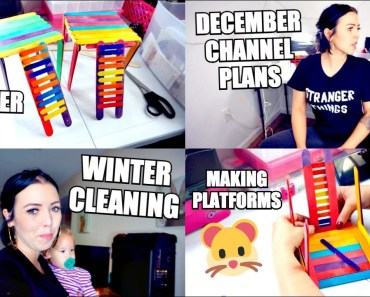 HAMSTER DIY TOYS, PLATFORM | WINTER CLEANING AND DECEMBER CHANNEL PLANS - hamster diy toys platform winter cleaning and december channel plans