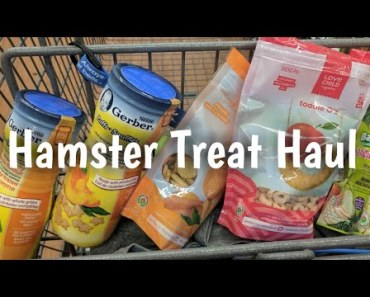 Shopping for Hamster Treats at Walmart - shopping for hamster treats at walmart