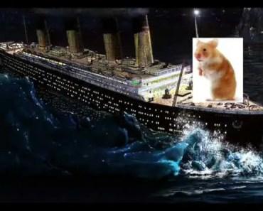 Titanic Hamster Remix [FUNNY LOL] - titanic hamster remix funny lol
