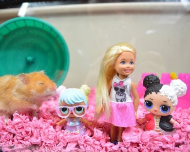 Barbie And LOL Surprise Dolls In Cage With GIANT Hamster! Barbie Videos - barbie and lol surprise dolls in cage with giant hamster barbie videos
