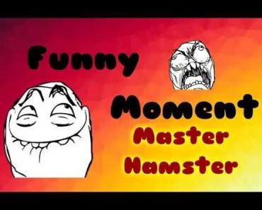 Funny Moment Master Hamster - funny moment master hamster