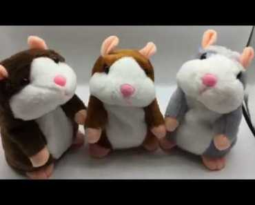 The joy of life - Baby and a talking hamster - The joy of life - the joy of life baby and a talking hamster the joy of life