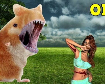 Hamsters the Best Hunters Ever! Wildlife Hamster Attack - hamsters the best hunters ever wildlife hamster attack