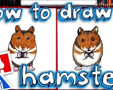 How To Draw A Realistic Hamster - how to draw a realistic hamster