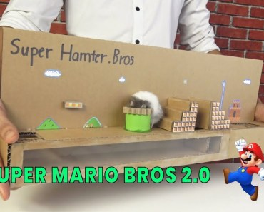 Super Mario Bros out of Cardboad Version 2 - Supper Hamter Bros - [No.5] Amazing Game from Cardboard - super mario bros out of cardboad version 2 supper hamter bros no 5 amazing game from cardboard