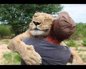 Animals Hugging Humans - Cutest Animal Hugs People Videos Compilation 2018 [BEST OF] - animals hugging humans cutest animal hugs people videos compilation 2018 best of