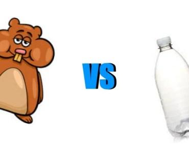 Hamster VS Flasche! - hamster vs flasche