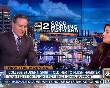Student who flushed hamster at BWI airport may sue - student who flushed hamster at bwi airport may sue