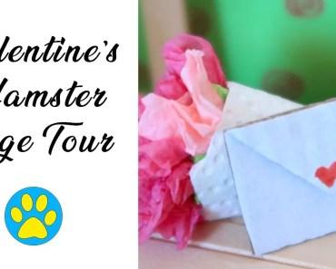 Valentine's Day Hamster Cage Tour - valentines day hamster cage tour