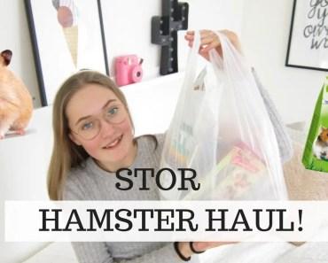 Hamster Haul!!! - 1520082685 hamster haul