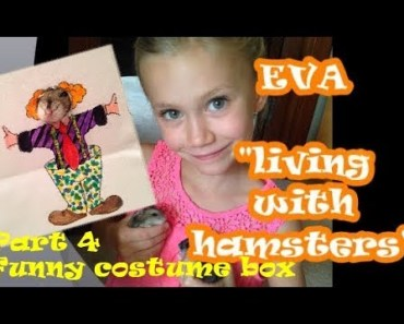 Eva - living with hamsters, Part 4 - Funny costume box - eva living with hamsters part 4 funny costume