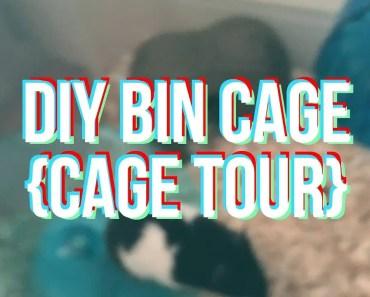 HAMSTER HOME MAKEOVER/CAGE TOUR (DIY BIN CAGE) | lelevstheworld - hamster home makeover cage tour diy bin cage lelevstheworld