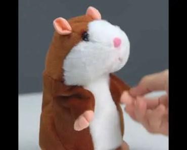 Talking Hamster Plush Toy - talking hamster plush toy