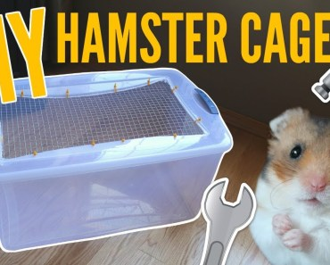 HOW TO MAKE A BIN CAGE | DIY Hamster cage! - how to make a bin cage diy hamster cage