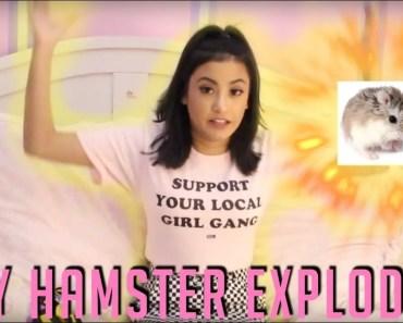 MY HAMSTER EXPLODED | STORYTIME - my hamster exploded storytime