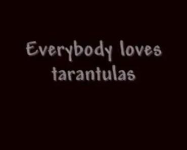 Tarantulas (Funny Song!) - tarantulas funny song