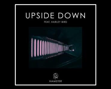 Hamster feat. Harley Bird - Upside Down - hamster feat harley bird upside down
