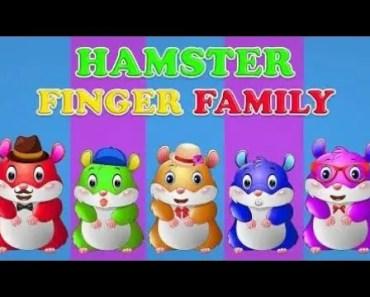 Hamster Finger Family Nursery Rhymes | Emax Kids Songs # 40 - hamster finger family nursery rhymes emax kids songs 40