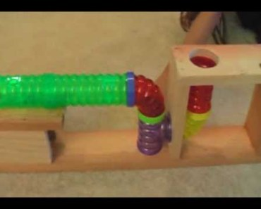 Hamster Obstacle Course - hamster obstacle course